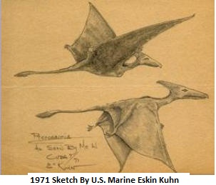 Guantanamo, Cuba 1971. U.S. Marine Eskin Kuhn claims to have witnessed two pterosaurs flying together. He tried to get another eyewitness to verify what he had seen, but the creatures were gone before he could pull his sergeant through the door. Kuhn later made sketches of what he saw.