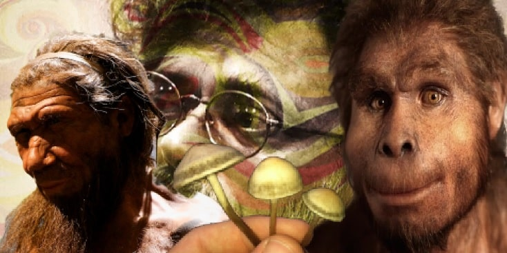 Terence McKenna and Stoned Apes